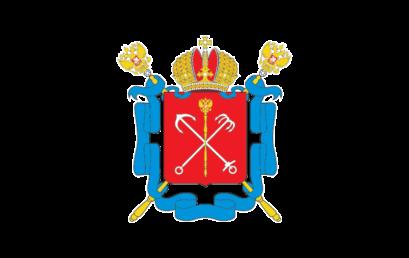 Приложение к решению Санкт-Петербургской избирательной комиссии от 15 августа 2019 года № 132-3